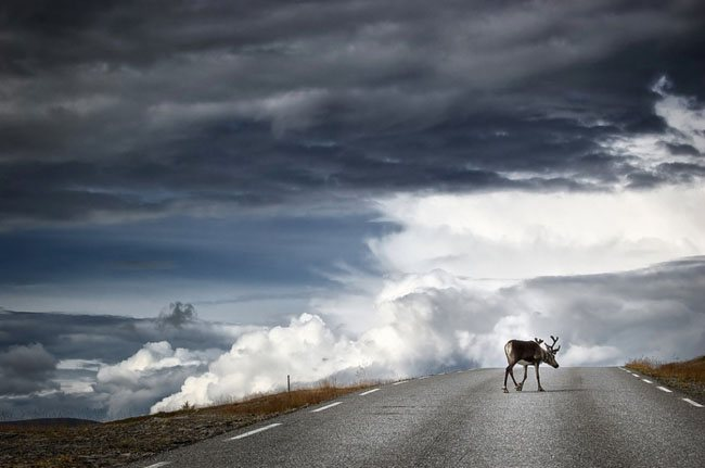 50+ Collection of Breathtaking Landscape Photography 14