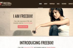 Handpicked Free Responsive HTML5 CSS3 Website Templates 3