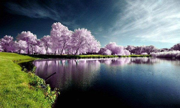 15+ Breathtaking Examples of Nature Photography 1