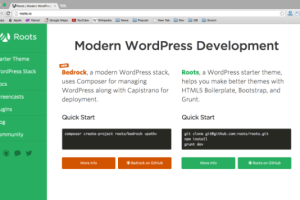 Top 10 Best Free WordPress Theme Frameworks 1