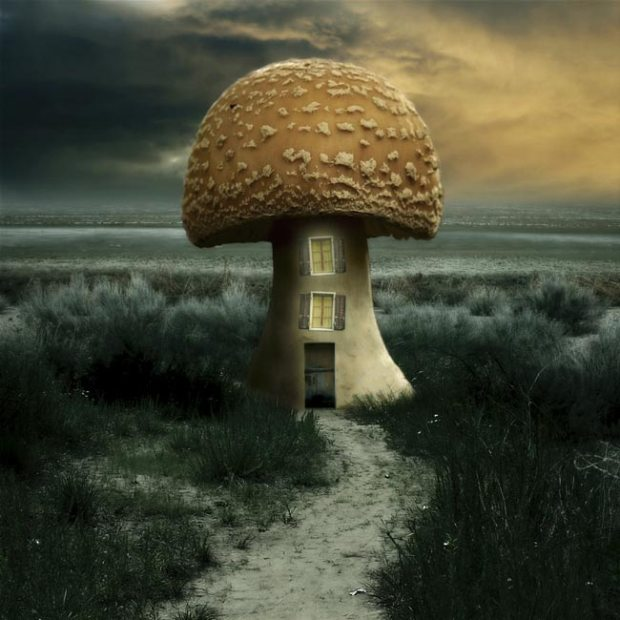 20+ Handpicked Examples of Surreal Photography 19