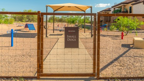 Tucson National Dog Ranch 4