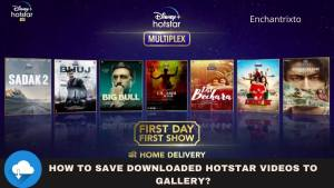 How to save hotstar videos to gallery