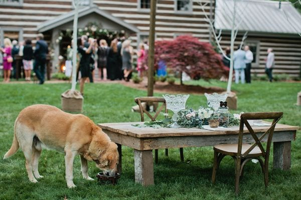 enchanted-florist-rustic-outdoor-wedding-fete-nashville-kristyn-hogan