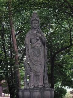 Sho Kannon At Zojoji Temple