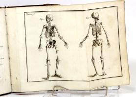 464. PERSON. Nouveaux élémens d'anatomie.