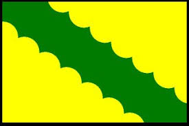 bandera de vega baja 2