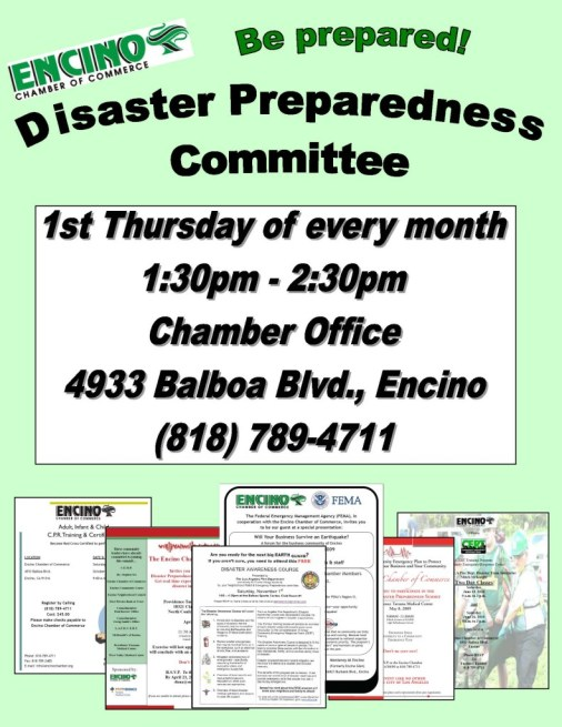 disaster prep flyer