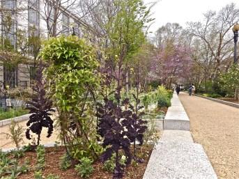 SI - butterfly garden 8