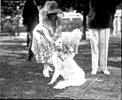 At the same party, Mrs. Coolidge with Prudence Prim, her white collie. The Coolidges had 4 cats, 7 birds, and 9 dogs.