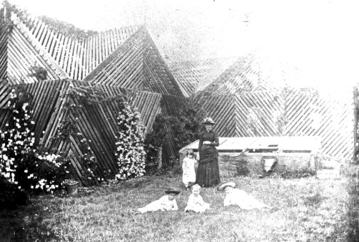 Bush- or shade-house at Toowoomba residence, Roslyn, ca. 1900.