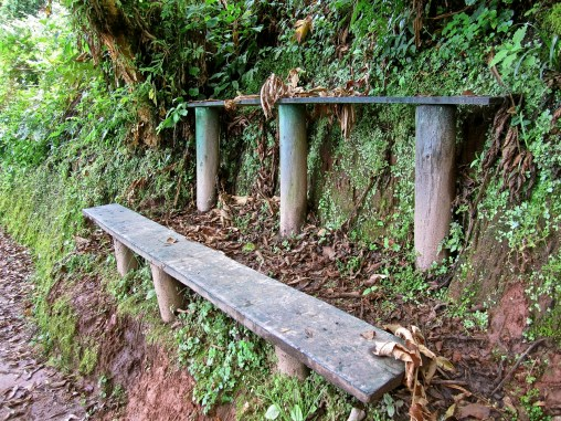Double benches.