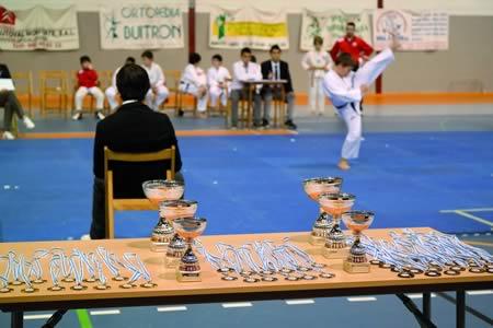 Os resultados que están a acadar nas respectivas categorías son unha mostra da boa saúde do taekwondo lucense. EC