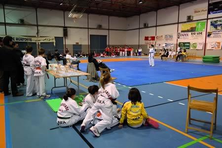 Público e participantes chegados de toda a provincia disfrutaron con esta auténtica festa do deporte, na cita do Campionato provincial de Taekwondo de Monforte.  EC.