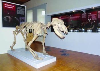 O Museo Xeolóxico de Quiroga rexistrou 1.843 visitas no que vai de ano, e o Museo Etnográfico contabilizou 2.125 visitantes.  Arquivo EC
