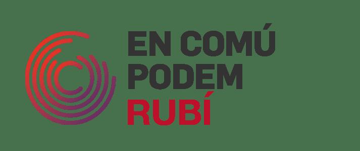 LA CONSTITUCIÓ, Article d'Opinió
