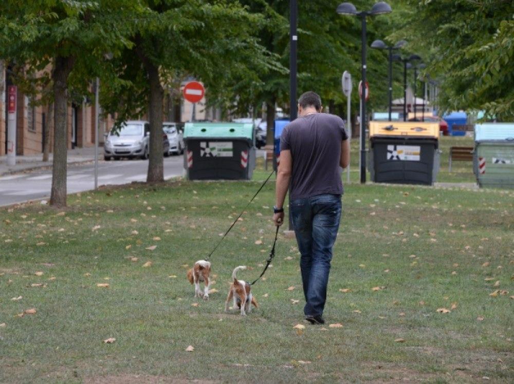 Només una persona podrà treure a passejar el gos i a una distància màxima de 200 metres del domicili