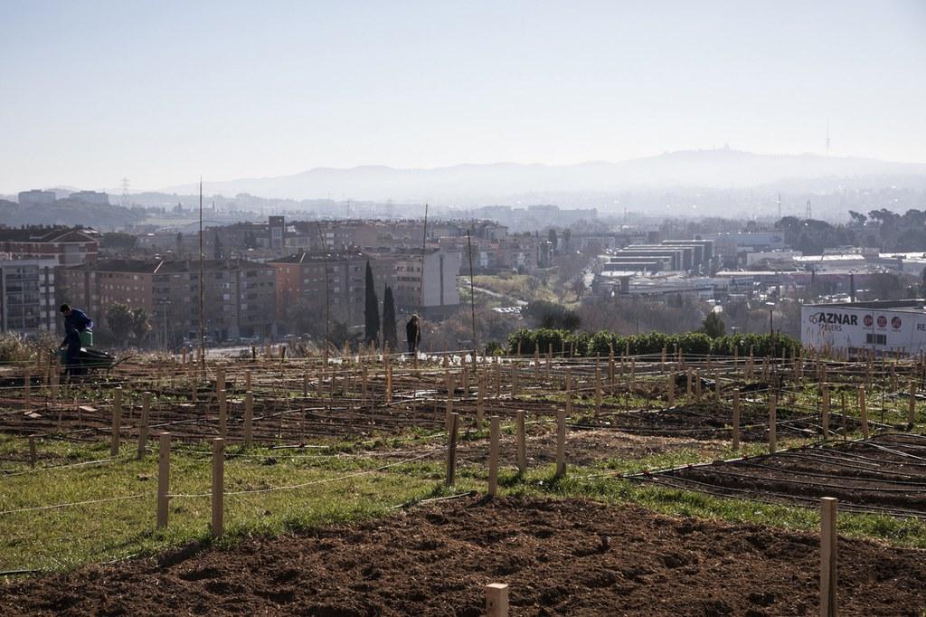 L'Ajuntament obre a consulta pública l'elaboració del reglament d'ús dels horts municipals de Cova Solera