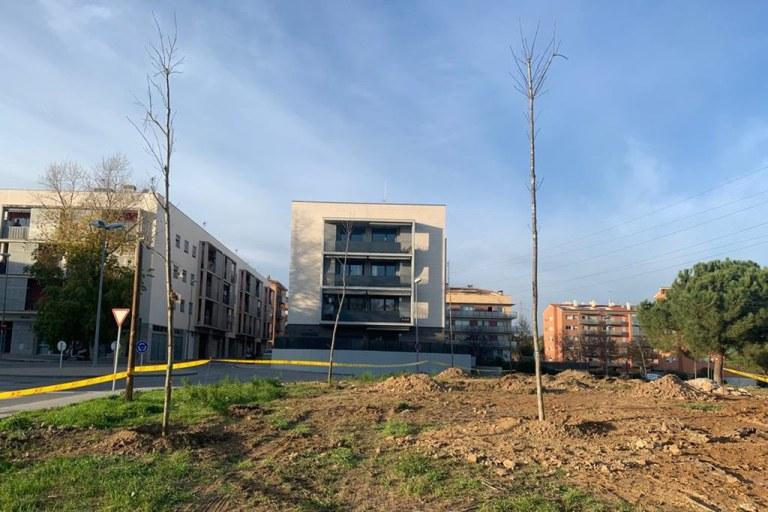 Rubí guanya més d'un centenar de nous arbres coincidint amb el Dia de l'arbre autòcton