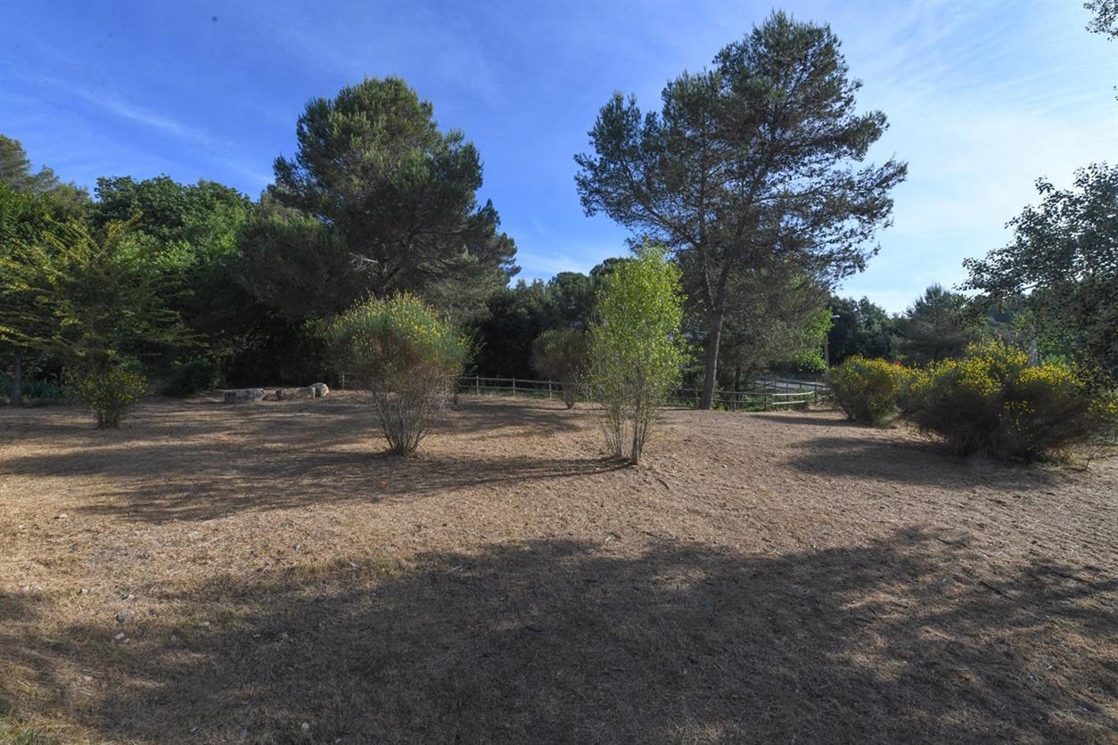 L'Ajuntament adequa l'entorn del torrentó de Can Solà perquè la ciutadania en pugui gaudir