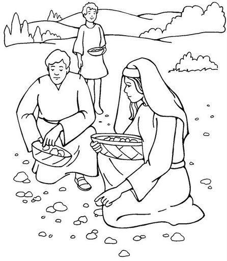 O povo no deserto–Maná-Água que sai da rocha