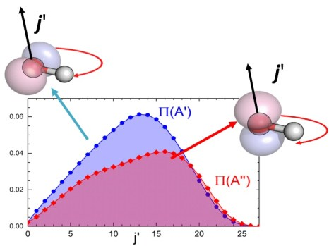 """Reactivity against the rotational level of each of the two levels of the pair of double states. As can be seen, the reactivity of the P (A ') states [in blue] is considerably greater than that of the P (A """") states [in red]"""