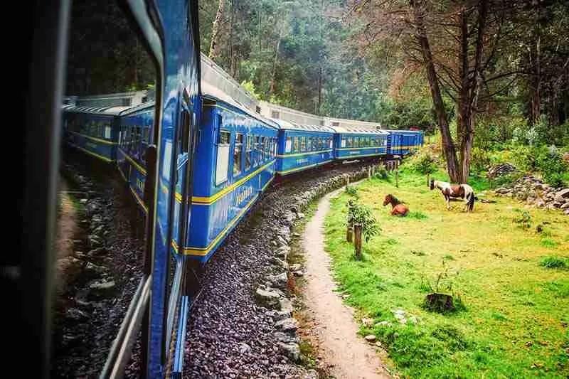 Machu Picchu By Train, Machu Picchu One Day Tour From Cusco, Choquequirao Trek to Machu Picchu