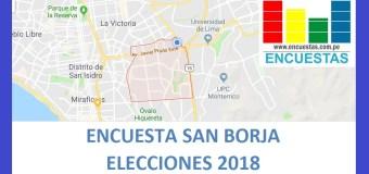 Resumen: Encuesta Alcaldía de San Borja – 08.01.2018 – 31.01.2018