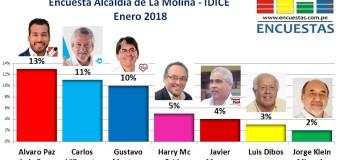 Encuesta La Molina, IDICE – Enero 2018