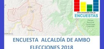 Encuesta Alcaldía Provincial de Ambo, Huánuco – Junio 2018