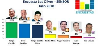 Encuesta Los Olivos, Sensor – Julio 2018