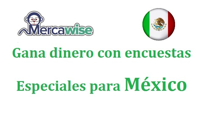 Mercawise opiniones