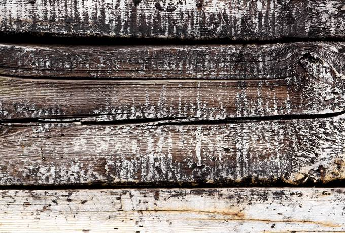 plank wood dirty