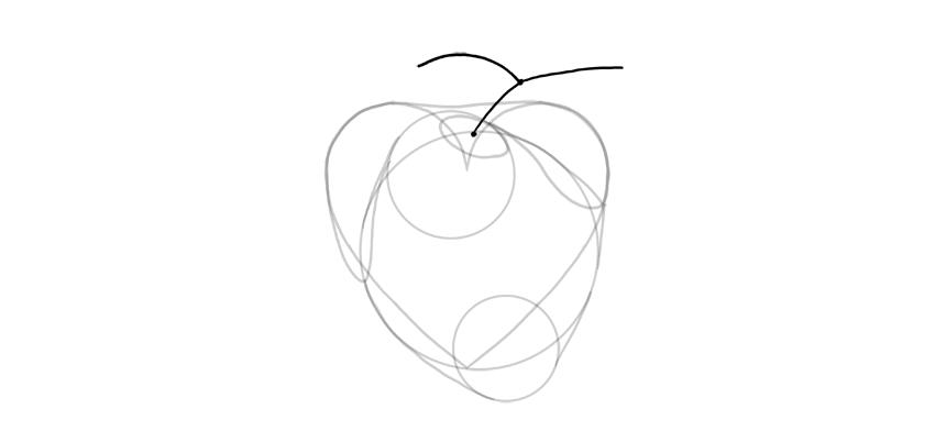 draw shape of artery