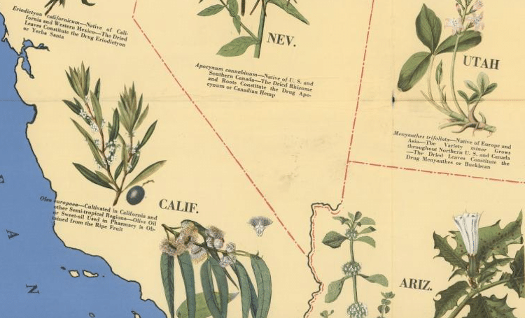 Medicinal Plant Map of the United States