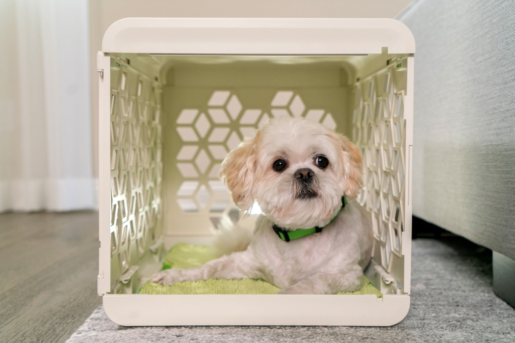 pawd_dog_crate_reinvented_05