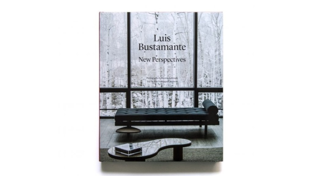 Luis Bustamante - New Perspectives