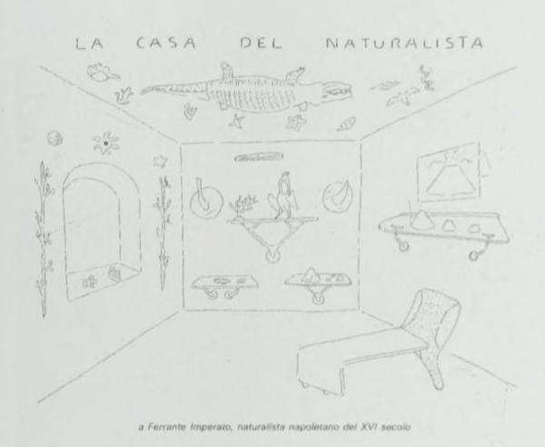 "The 'Naturalist Home"" Sketch by Patrizia Ranzo"