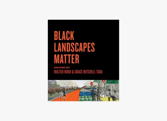 Black Landscapes Matter