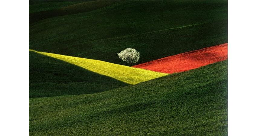 Natural landscape photo by Franco Fontana