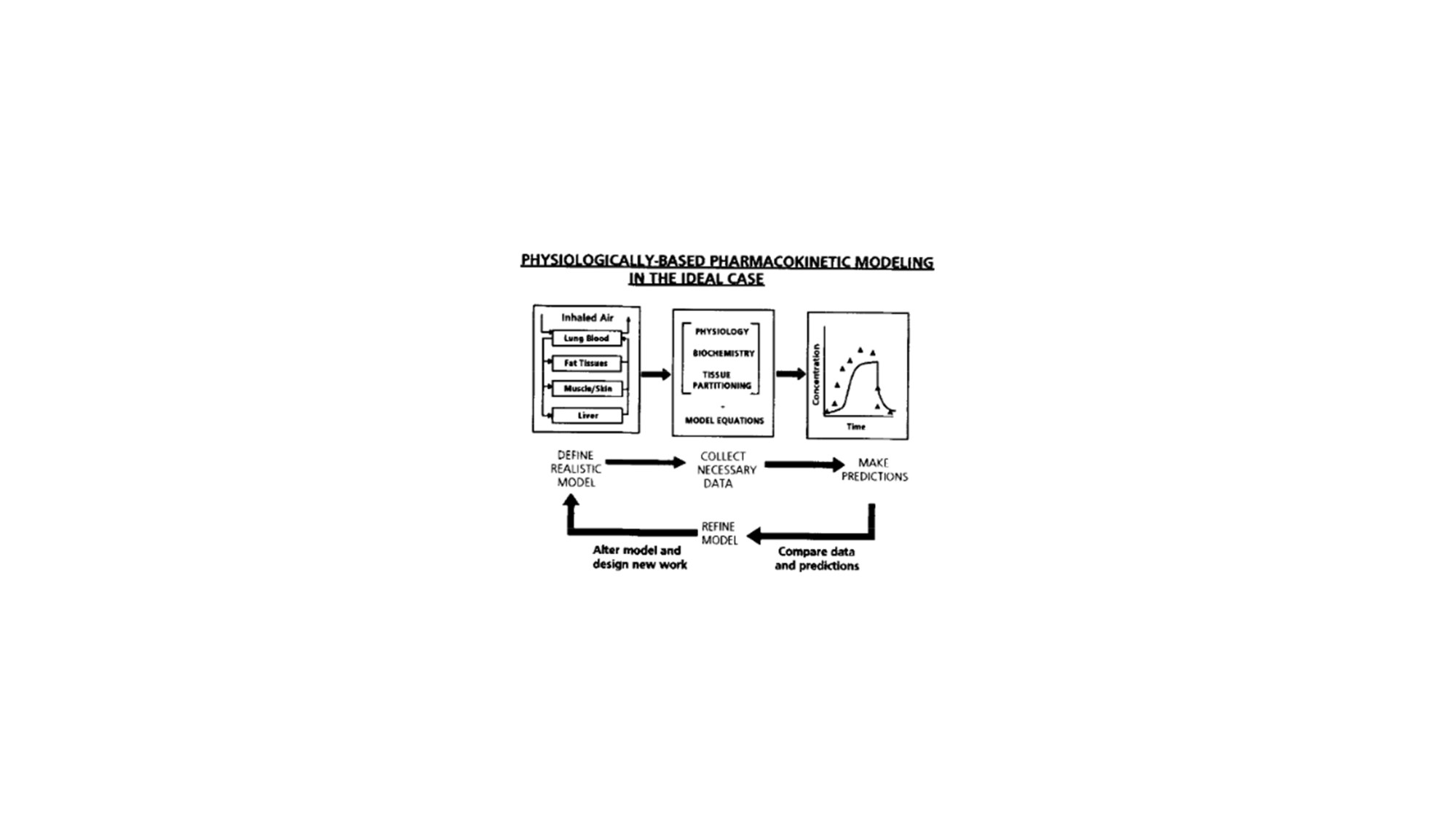 hight resolution of figure 7 representative illustration of the important aspects that should be considered in order to develop an accurate and adequate pbpk model i