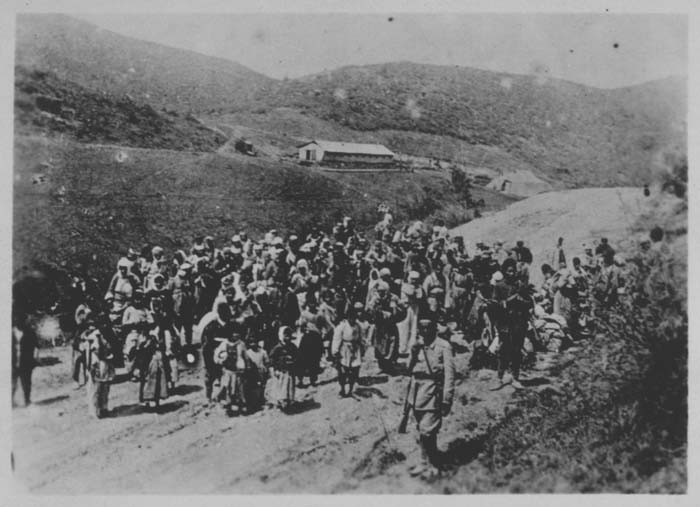 The Armenian Genocide 191516 In Depth  The Holocaust Encyclopedia