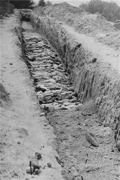 Camp De Concentration De Mauthausen : concentration, mauthausen, Charnier, Concentration, Mauthausen., Mauthausen,, Autriche,, 1945., Encyclopédie, Multimédia, Shoah
