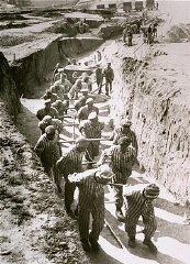 Camp De Concentration De Mauthausen : concentration, mauthausen, Mauthausen:, Forced, Labor, Subcamps, Holocaust, Encyclopedia