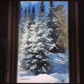 Snowglobe Window