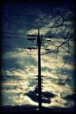 Telephone Pole 1