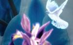 The Iris - Inspiration for the Fleur-de-lis