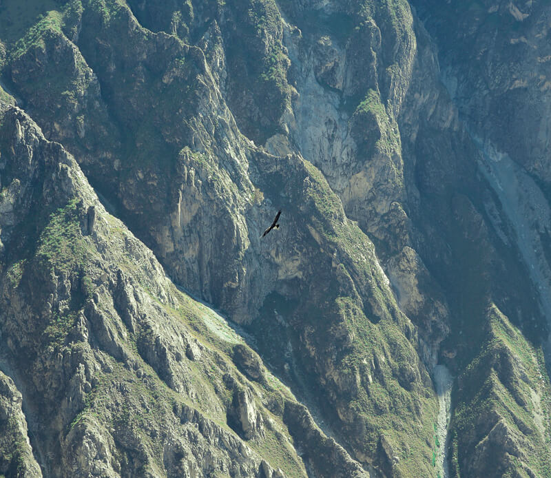You cant miss colca canyon in Peru