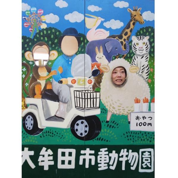 大牟田動物園、こんなご長寿ペリカンがいてびっくり😲