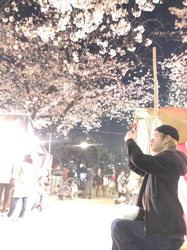 エンドリンクスタッフで夜桜を見に行って来ました!in土佐稲荷神社